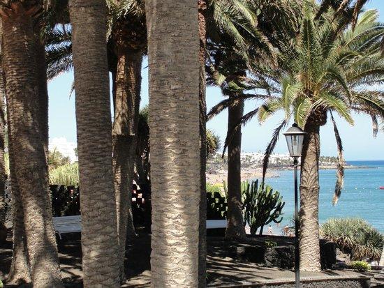 Los Fariones Hotel : Les jardins, le solarium, la piscine, la plage privée