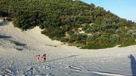 Straddie Adventures: climbing up sand dunes