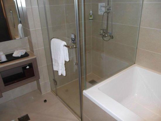 Taipei Garden Hotel: Shower
