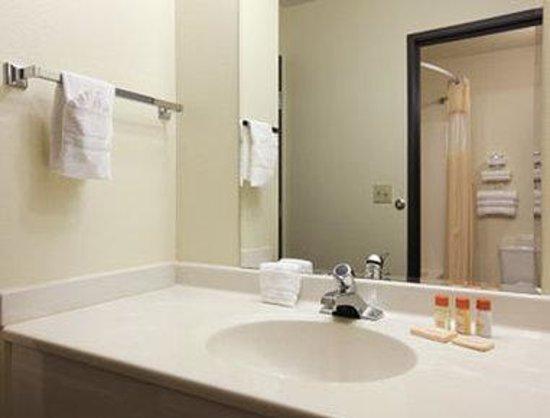 Days Inn Colorado Springs Air Force Academy: Bathroom