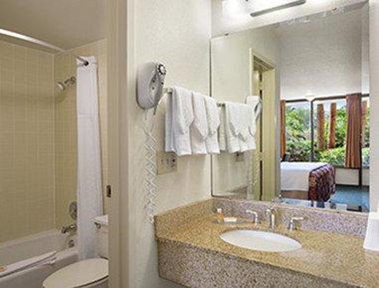 Days Inn Orlando Convention Center/International Drive : Bathroom