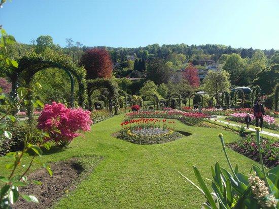 Parco della Villa Pallavicino : giardini