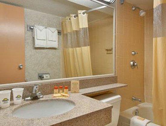 Days Inn Ann Arbor: Bathroom