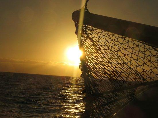 Bussard & Inia Ocean Explorer Tazacorte : Sunset - Tour mit der Bussard