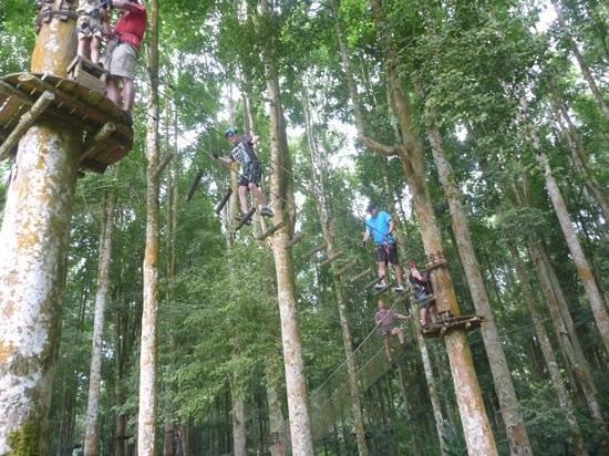 Bali Treetop Adventure Park: Green circuit