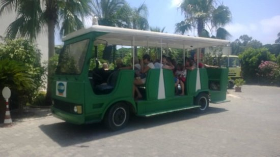 Belkon Club Hotel: bus for beech trips