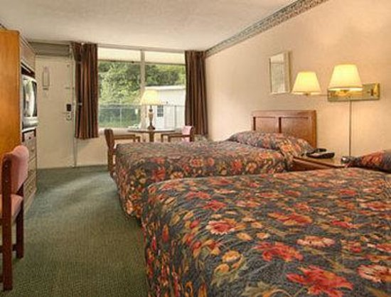 Days Inn Alexandria South : Standard Two Queen Bed Room
