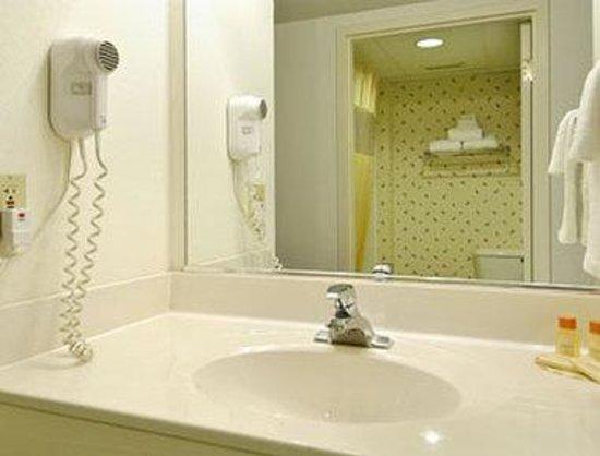 Days Inn Lebanon/Fort Indiantown Gap: Bathroom