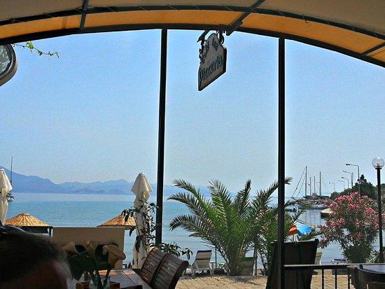 Cafe Inn : Aussicht