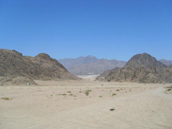 Sinai Safari Adventures: Sinai Desert