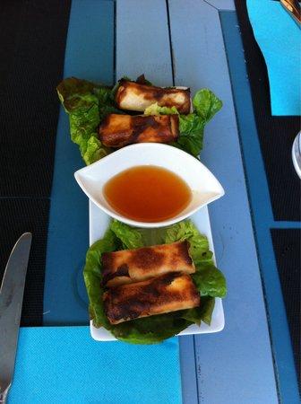 Le Pelagos : Nems des collines, avec fromage de chèvres... Un délice.