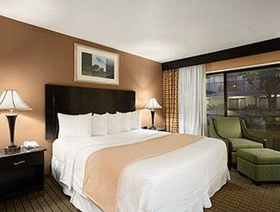 Days Inn Hollywood Near Universal Studios : One King Bed Jacuzzi Suite