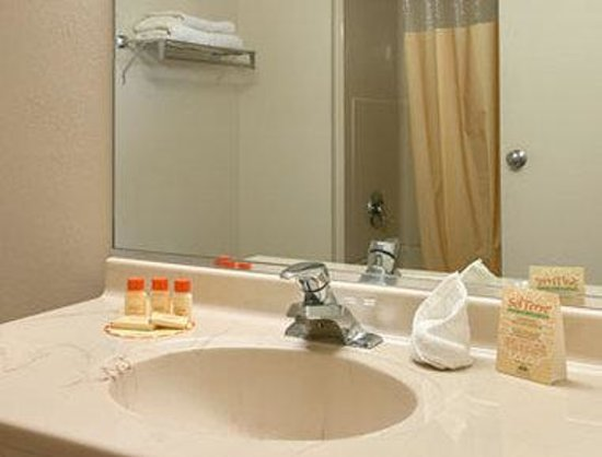 Days Inn Elk Grove Village/Chicago/O'Hare Airport West: Bathroom