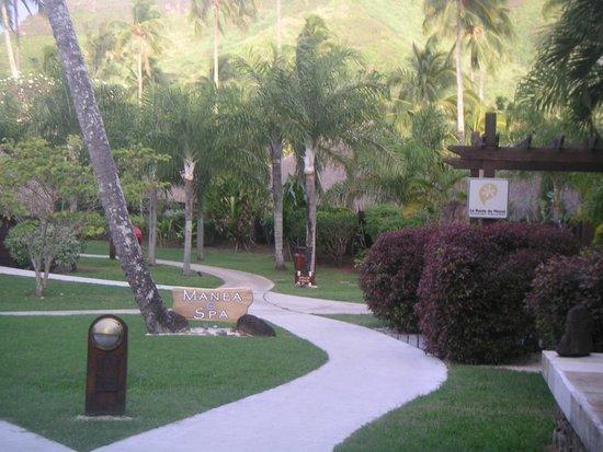 Manava Beach Resort & Spa - Moorea : le jardin