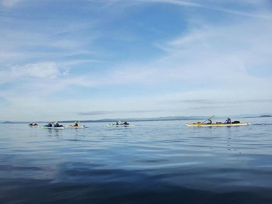Sea Quest Expeditions Kayak Tours: Beautiful paddling conditions
