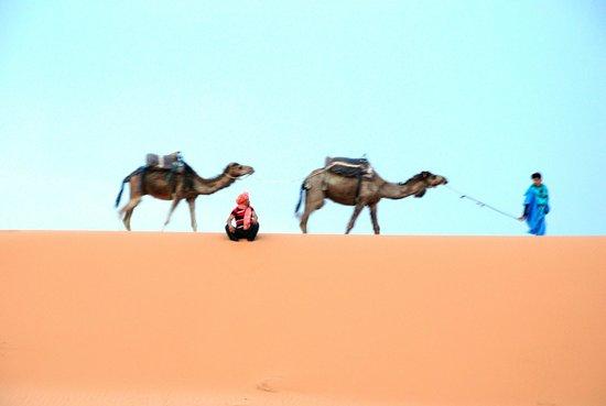 Merzouga Dunes Luxury Camps: View