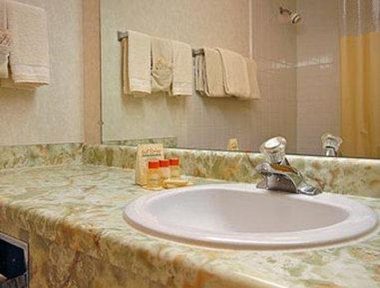 Days Inn Bridgewater Conference Center Somerville Area: Bathroom