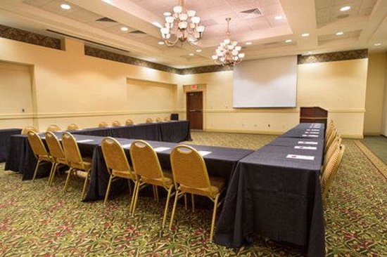 Drury Inn & Suites Cincinnati North: Meeting Room