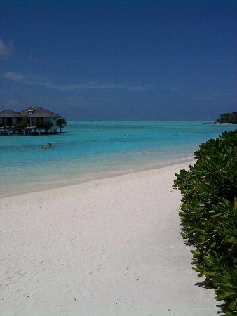 Sun Island Resort : Песок. Океан