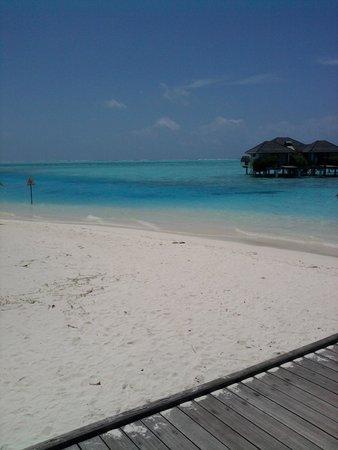Sun Island Resort: Восхитительный пляж
