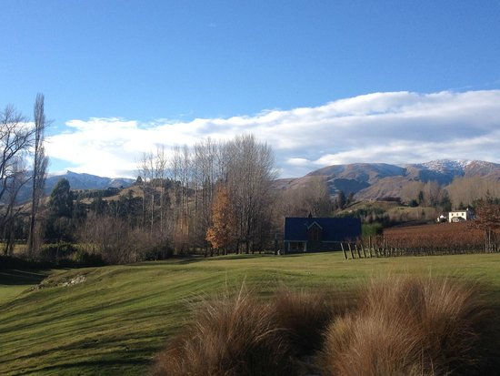 Amisfield Winery & Bistro : View from the courtyard area