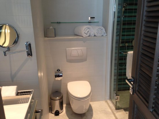 Lanson Place Hotel: Bathroom: compact but had everything