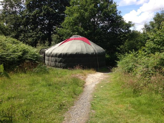 Lovely Yurt Company: Our holiday