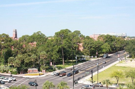Holiday Inn Gainesville University Center : View from Hotel