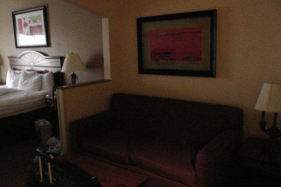 Comfort Suites: Sitzbereich