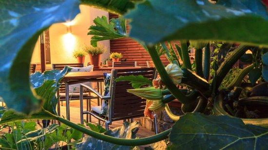 Restaurant Valentin: back side --- Hinterhof-Terrasse