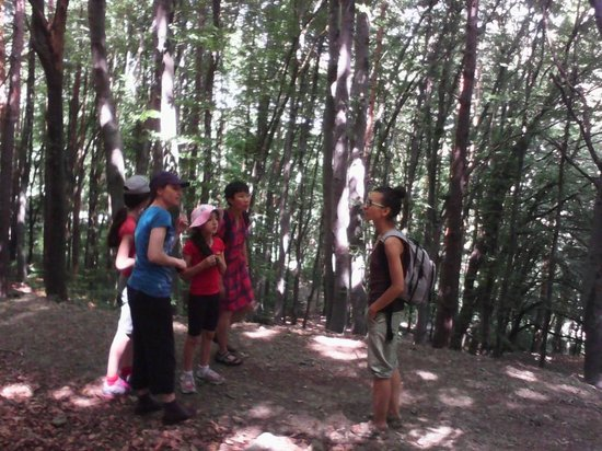 Free Sofia Tour: Mountain Vitosha with Antonia