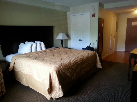 MainStay Suites Knoxville: Bed & Closet. There's also an armchair next to the bed, not pictured.