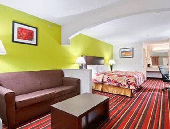 Days Inn & Suites Winnie: Standard One King Bed Room