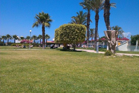 Crown Resorts Horizon: Gardens