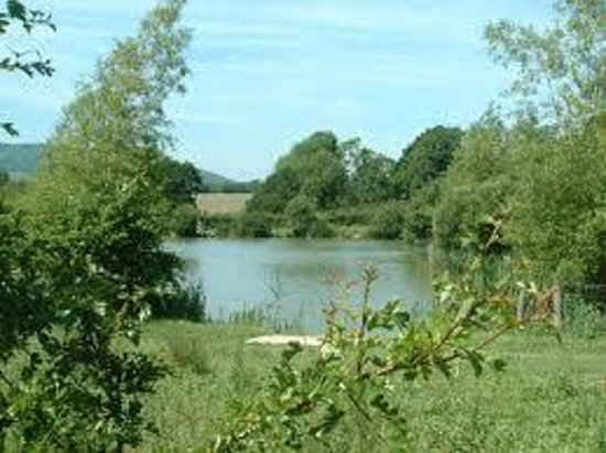 Steyning, UK: Alderwood Pond