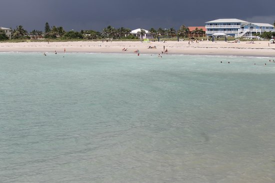 Hutchinson Island Plaza Hotel and Suites : public beach near hotel - pic taken from jetty