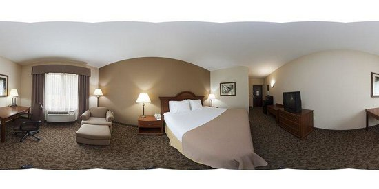 Holiday Inn Express Hotel & Suites Brevard: King Leisure Room