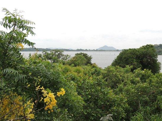 Heritance Kandalama : view from hotel terrace