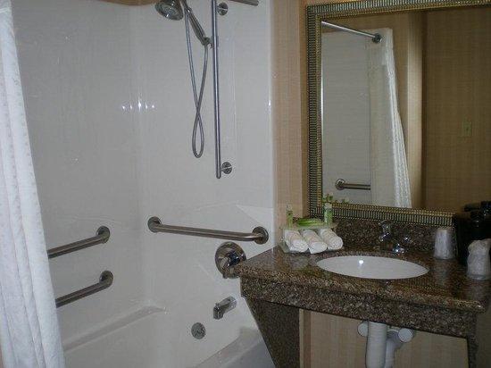 Holiday Inn Express New Buffalo: Single Bed Guest Room / handi cap bathroom