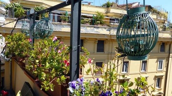 La Fenice: Roof top terrace