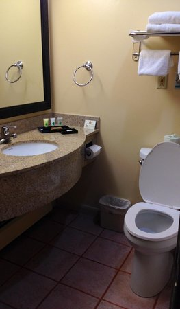 Best Western Bennington: Room 121 bathroom is bigger than it looks