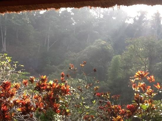 Santi Mandala : view from room balcony