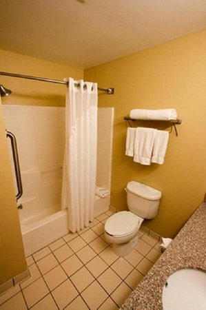 Holiday Inn Express Hotel & Suites Chicago-Algonquin: Guest Bathroom