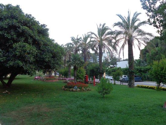 Papillon Ayscha Hotel Resort & Spa: garden