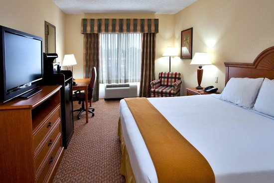 Holiday Inn Express Hotel & Suites Spring Hill: King Bed Guest Room