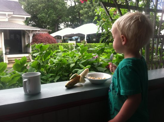 Oak Bluffs Inn : Early monring breakfast on the porch