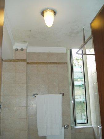 Hotel Savoy : バスルーム
