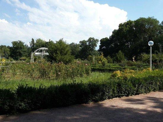Salgirka City Park: Розарий Ботанического сада ТНУ им. Вернадского