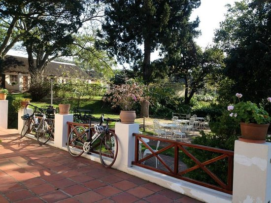 Cycle the Cape - Day Tour: lunch in the mountains