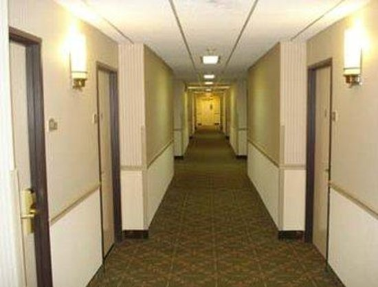 Quality Inn & Suites: Corridor